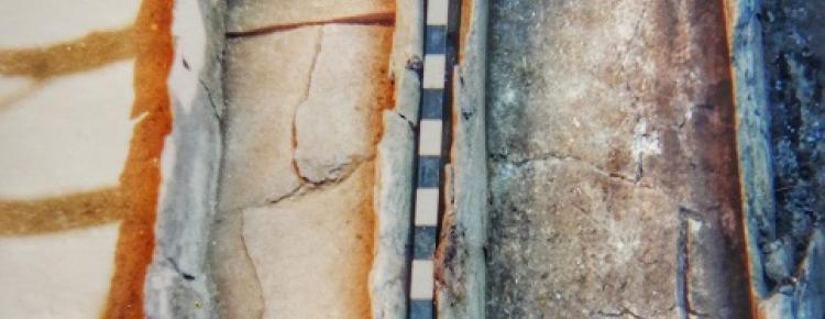 Саркофаги з поховального комплексу ХV ст. 1998 р.
